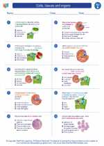 Cells Tissues And Organs Science Worksheets And Study Guides Fifth