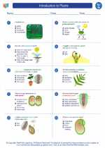 Introduction to Plants