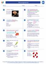 Microorganisms I. Biology Worksheets and Study Guides High School ...