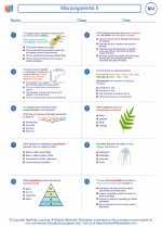 Microorganisms II
