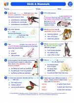 Birds and Mammals