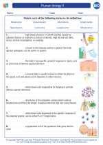 Human biology II