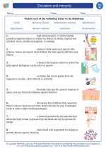 Circulation and immunity