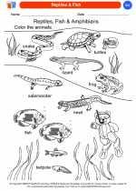 Reptiles & Fish